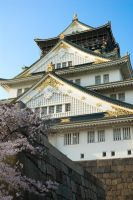 Osaka Castle - Portrait by ricperry1