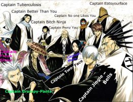 Bleach-- Captain's Nicknames by ShadowyObserver