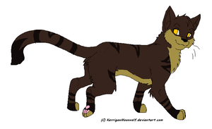 Warrior Cat Adopt 1 TOM OPEN .: 5 points :. by xBreezeEclipsex