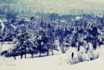 Save the last Winter for me by LuizaLazar