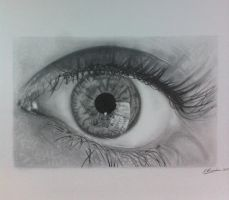 eye reflection in pencil by S-Messias