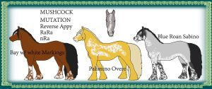 Mushcock Mutation: Reverse Appaloosa by OceanLore