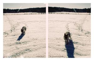 Wild Thing    or doggy love 03 by CinnamonGirlMika