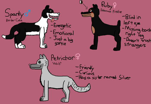Adopted Canines - Sparky, Ruby, and Petrichor by SkrillexWolf777