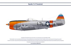 P-47 USAAF 512th FS 1 by WS-Clave