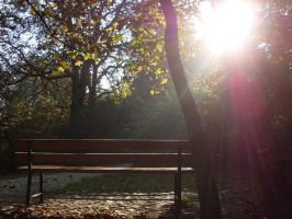 bench. by syncopated-ART