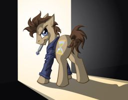 Doctor Whooves by Poofiemus