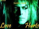 Love Hurts - Sarah x Jareth by Ashsong0