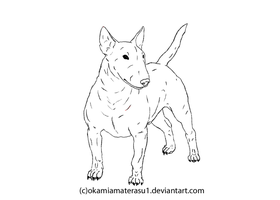 Bullterrier LineArt -FREE USE- by OkamiAmaterasu1