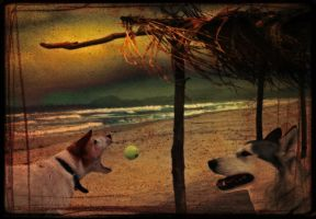 life is a ball by DogAngel
