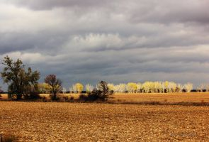 Cloudy Fall Afternoon by silverlakephotos