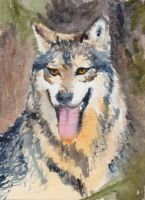 Wolf02 by kitschpainter