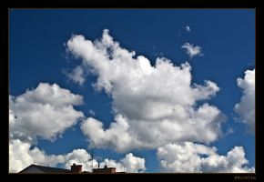 Alice's Bunny In The Sky by RRVISTAS