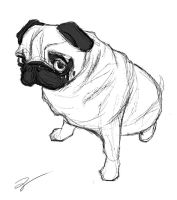 Scribblepug by juhoham