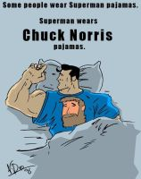 chuck norris fact by N-Dee