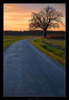 The Lonely Road by AndreasResch