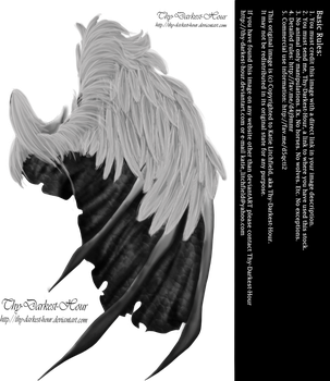 Feathered Demon Wings 01 by Thy-Darkest-Hour