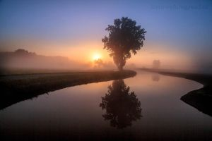 Misty Monday Morning. by Betuwefotograaf