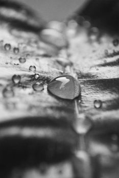 happy drops by Sadeq-Photography