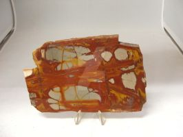 Noreena Picture Jasper by Janski-Designs