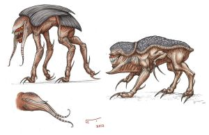 HOS project: Locust hunting hounds by ECTmonster