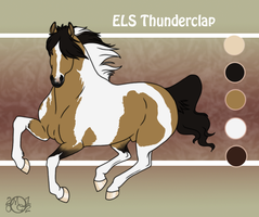 ELS Thunderclap by EverlastingStables