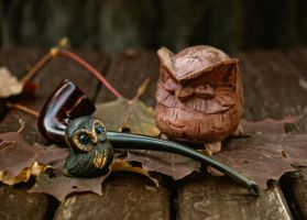 The two owls and the tobacco pipe by cezare-me