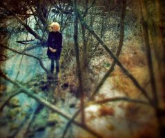 view from the tree house by lafaette