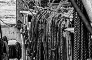 Mayport Ropes by jeffcrass