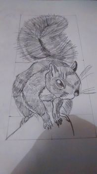 squirl sketch by MLPakroma
