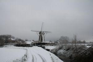 12-12-07 Winter Wonderland 19 by Herdervriend