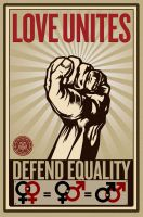 Defend Equality... by evionn