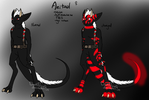TBI: Azitael reference sheet by DarkNymfa