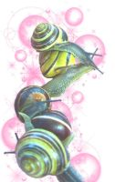 snail train by pandasnacks