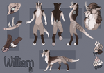 Refsheet for WhiteFoxy94 by I-psilone
