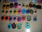 Virtual Pet Obsession by Zet206