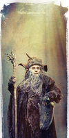 Radagast the Brown by G-10gian82