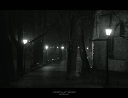A Nightwalk In Krakow by JuliaKretsch