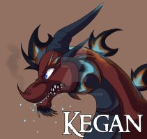 Faded Thunder: Kegan by R-Spanner