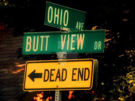 Dead end at BUTT VIEW... by wikdevilgoddess