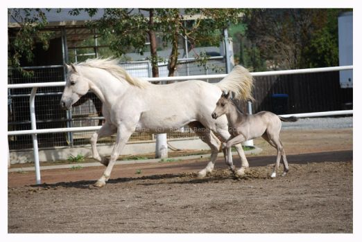 CeCe and Baby by hoodsey