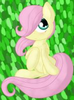 Filly Fluttershy by Conmankez