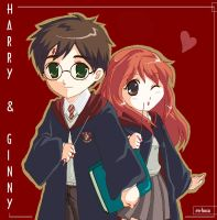 Harry-Ginny by rm-tosca