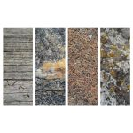 Free Nature Texture Packs by mechex9