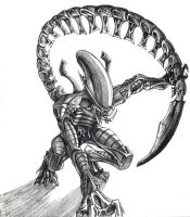 Predalien by chrisbeaver
