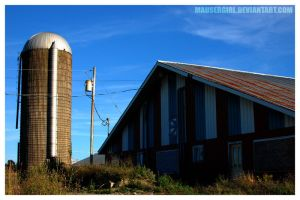 The Grain Silo by MauserGirl