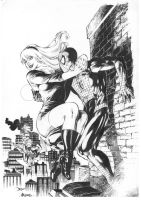 Spider man and Gwen Stace by Alissonart