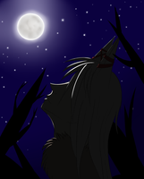 Night in the Forest by DragonVampriss