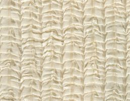 Ivory Silk Textile by ambersstock
