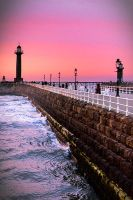 Whitby XIV by cardinal